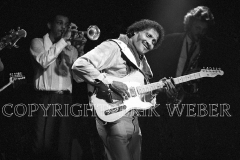 Albert Collins (Oct 1932 – Nov 1993) February 1998