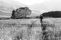 McGuane Ranch, Livingston, Montana, October 1972
